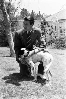 """tumblr nbaj8j9Q661sbnelto7 400 - """"Beau"""", o lindo poema que James Stewart escreveu para seu cão"""
