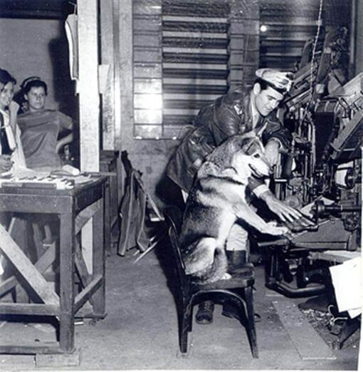 """vr 9 - Crítica nostálgica da clássica série nacional """"O Vigilante Rodoviário"""" (1959-1962)"""