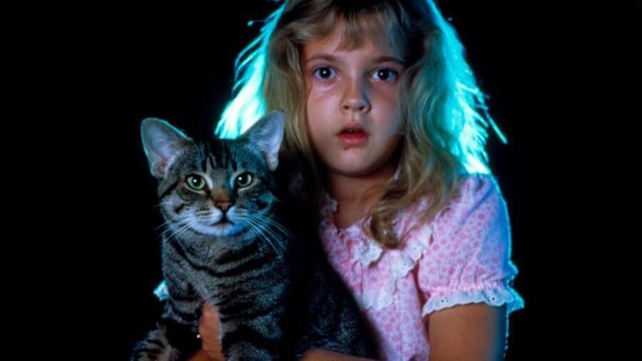 cats eye stephen king drew berrymore - TOP - Os 20 Melhores Filmes Adaptados de Livros do STEPHEN KING