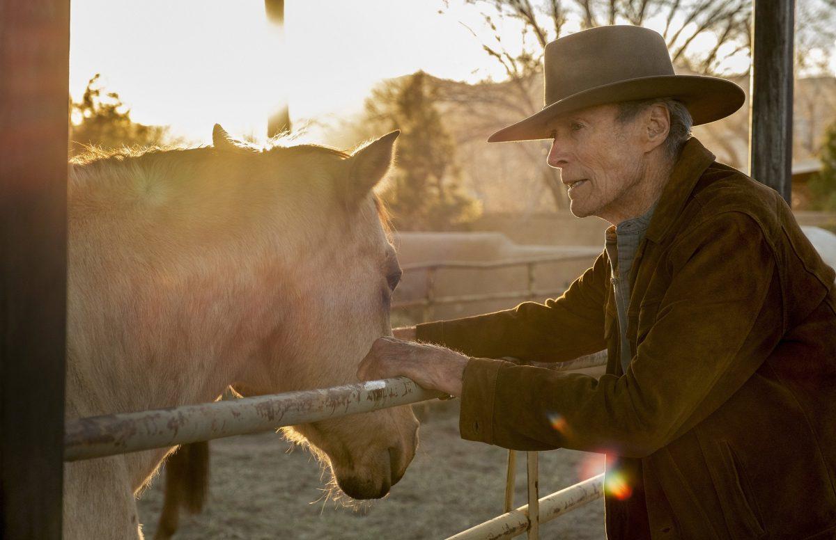 """144965 scaled - Crítica de """"Cry Macho - O Caminho Para Redenção"""", de Clint Eastwood"""